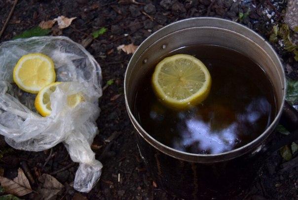 Рецепты вкусного чая с травами