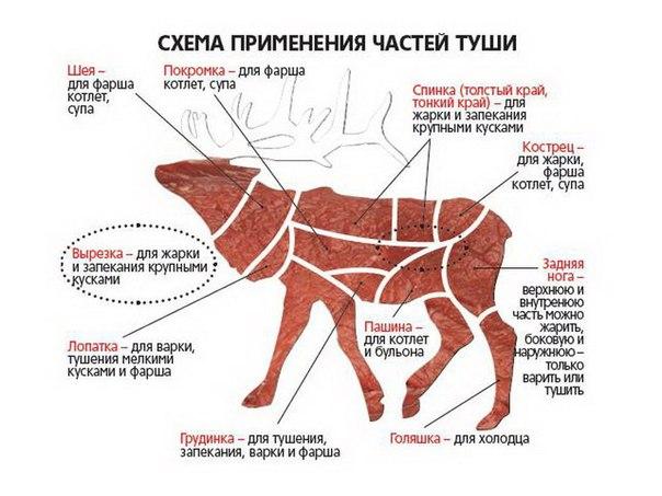 http://www.zakabanom.ru/image/article/1/0/2/1102.jpeg