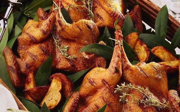 Рецепты блюд из куропатки